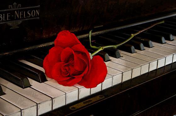 rose piano